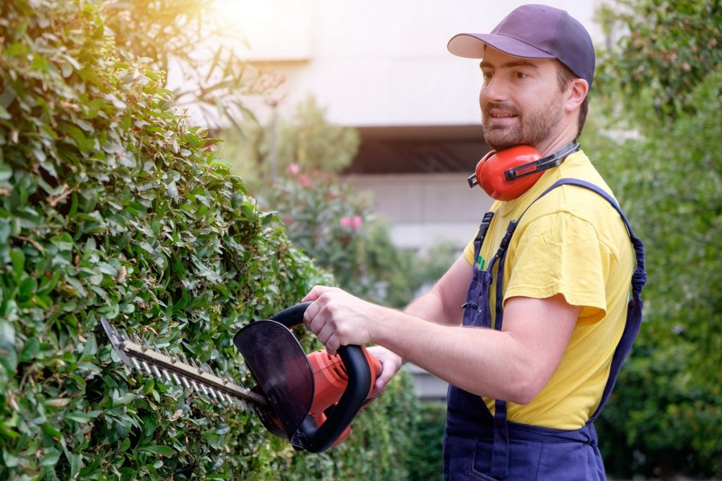 Professional landscaper