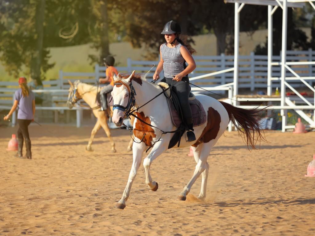 Woman having a horseback riding lesson
