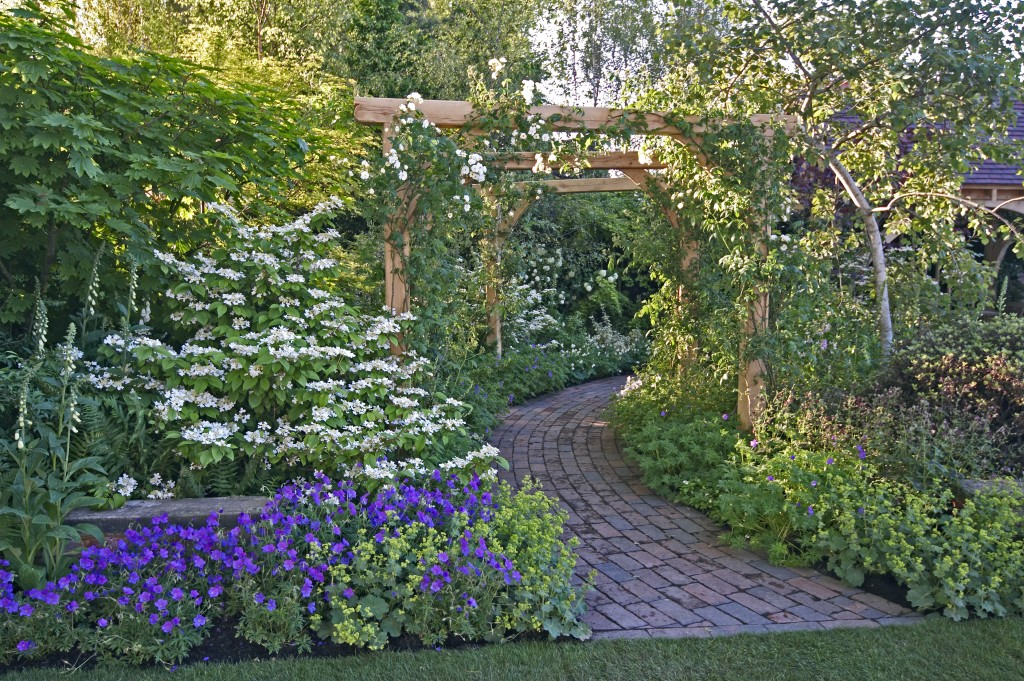 Garden with a pathway