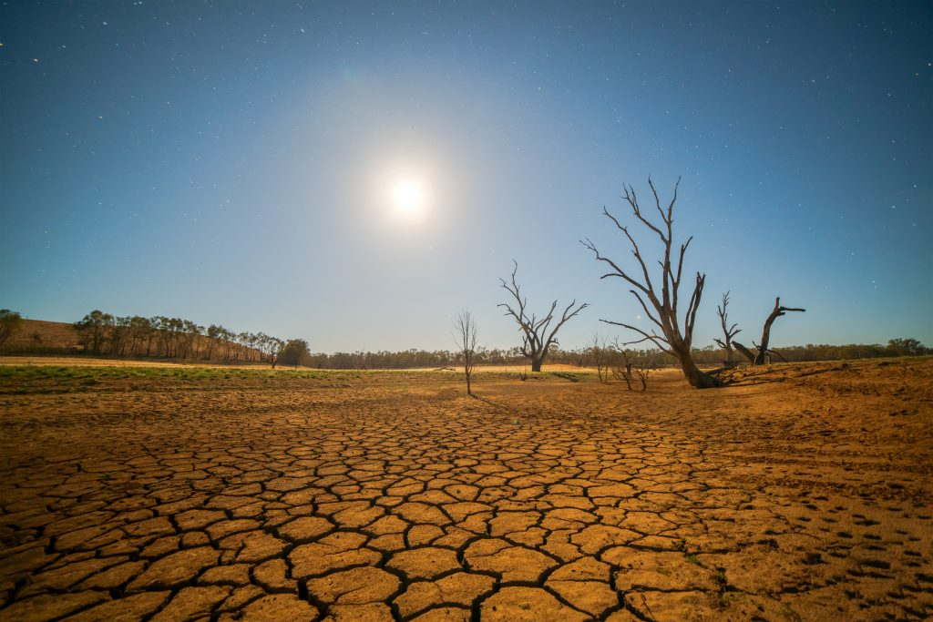 dry and cracked land during drought