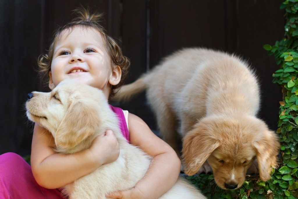 Little girl with 2 puppies