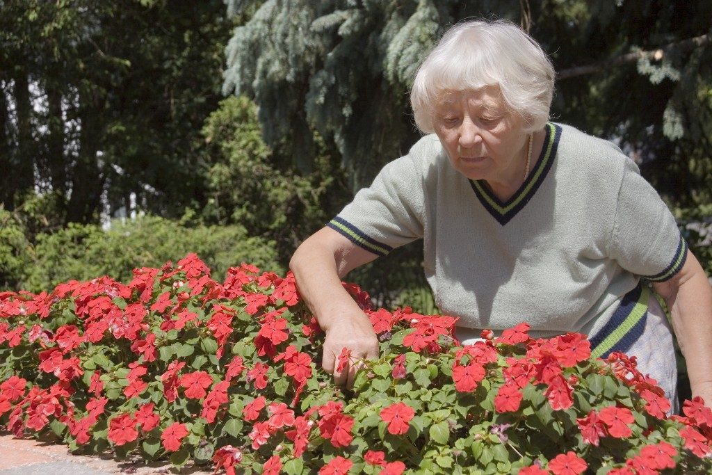 Elderly woman checking the flowers